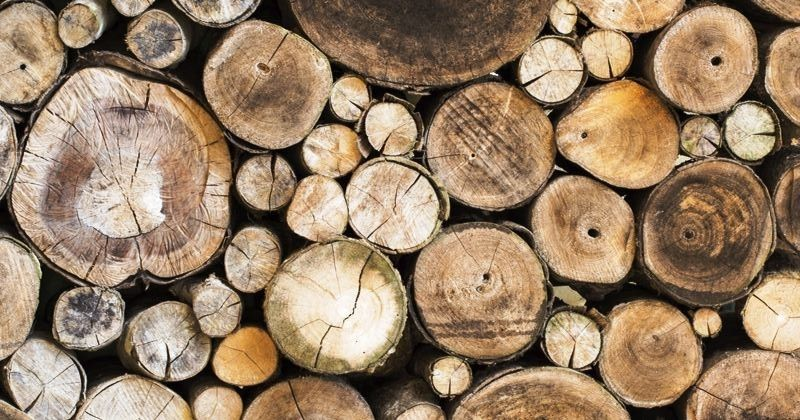 b2c-furniture-modern-hardwood-sustainability1