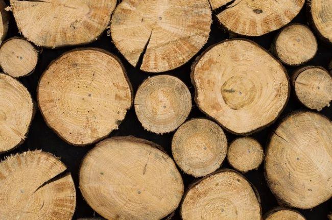 hardwood-rubberwood-timber